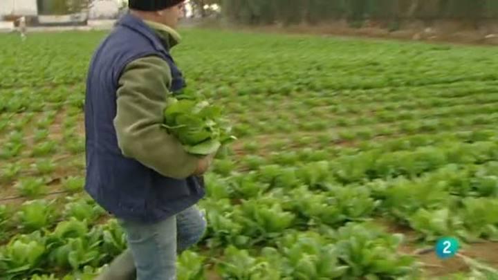 Para todos la 2 - Debate: El empleo verde