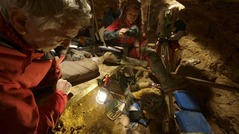 Un equipo de científicos que trabaja en Atapuerca consigue secuenciar el ADN de un fósil de oso