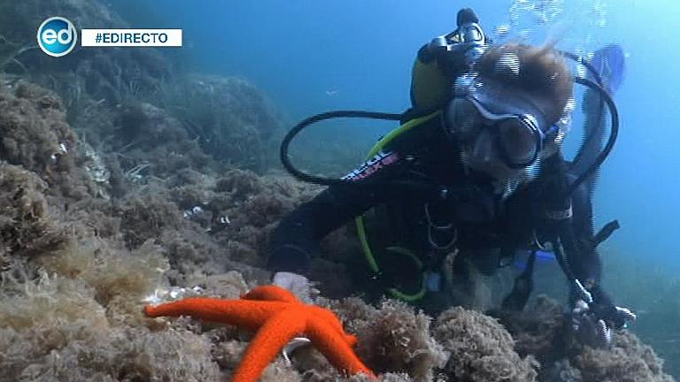 España Directo- España Directo se sumerge en las profundidades marinas