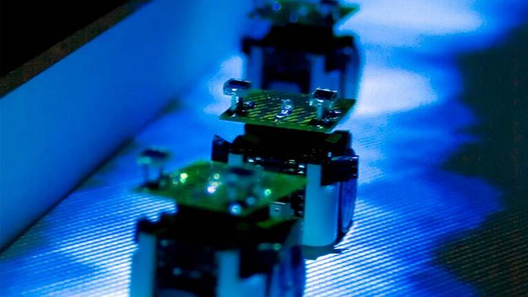 1365585964631 ANALISIS - Robots que se comportan como hormigas NOTICIAS