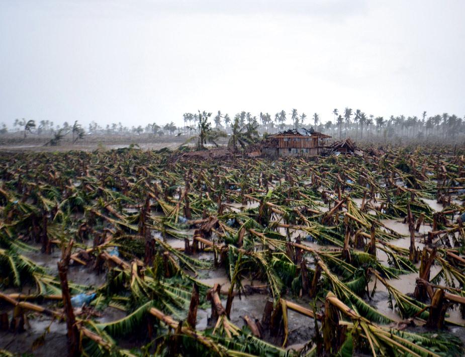 En Filipinas, las inclemencias meteorológicas también causaron serios destrozos en 2012. Así quedó una granja tras la devastadora accción de un tifón. (Foto: JASON GUTIERREZ)