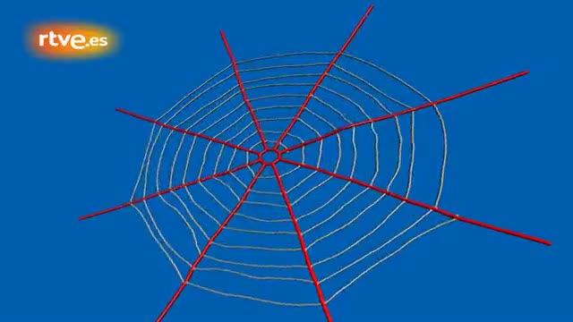 Como hacer una tela de ara a imagui - Como hacer tela de arana ...
