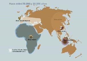 Ver v?deo  'El genoma de los Neandertales confirma que se cruzaron con los humanos modernos'
