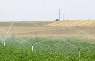 Ver v?deo  'Hacía 12 años que la UE no aceptaba introducir en el mercado nuevos cultivos transgénicos'