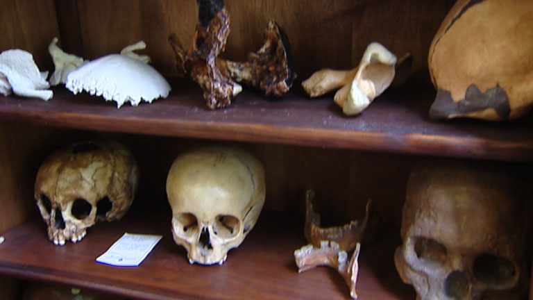 http://img.irtve.es/imagenes/hallan-atapuerca-gran-coleccion-craneos-fosiles/1403272852534.jpg