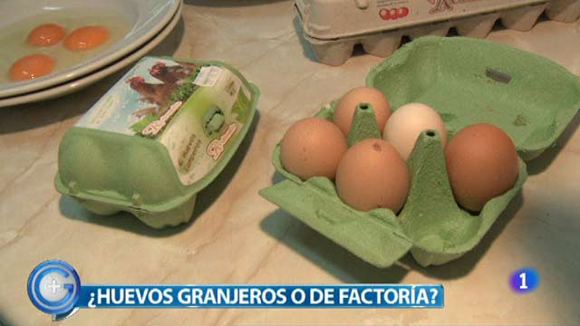 M&aacute;s Gente - El reto de cocina - &iquest;Huevos ecol&oacute;gicos o de factor&iacute;a?