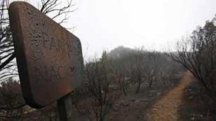 Ver vídeo  'El incendio de la Gomera ha afectado a más de 3.000 hectáreas.'