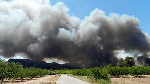 Ver vídeo  'El incendio de Hellín está estabilizado pero no controlado'