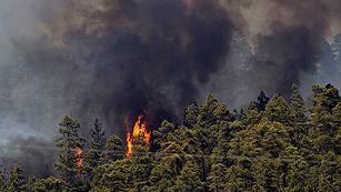 Ver vídeo  'Incendio en la Palma y Tenerife, el fuego amenaza al Parque Nacional del Teide'