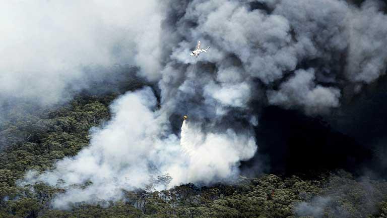Un centenar de incendios forestales destruyen más de 200 viviendas en Australia
