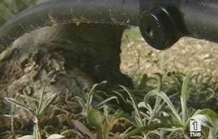 Ver vídeo  'Informe semanal - Agua gran reserva'