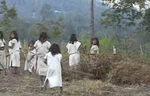 Ver vídeo  'Informe semanal - Indígenas entre dos fuegos'