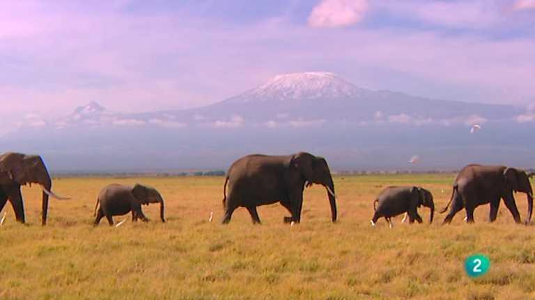 Paraísos cercanos - Kenia, la cima africana