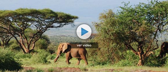 Kenia y Somalia: placer y dolor de África