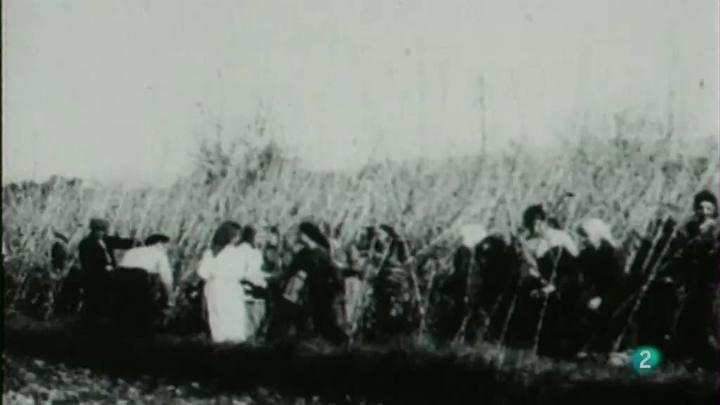 Moments - El camp i l'agricultura catalana