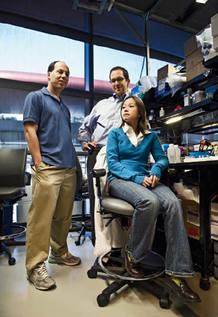 Logran secuenciar el genoma humano por 50.000 dólares