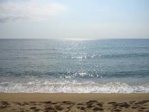Los océanos son salados porque tienen disueltas sales minerales