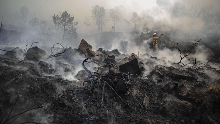 Más de mil personas y 31 medios aéreos trabajan en la extinción del incendio de Málaga