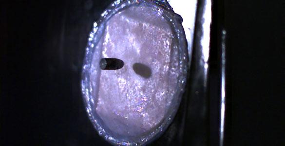 Una máscara de seda de araña a prueba de balas