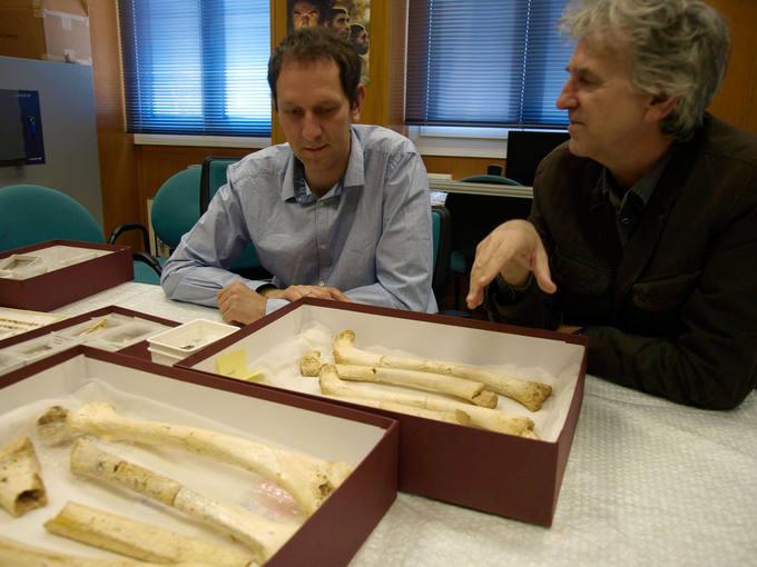 El ADN humano más antiguo