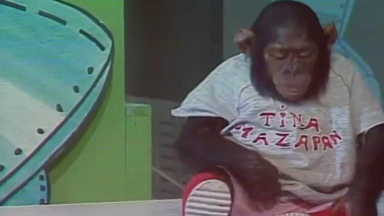 Un 'Mazapán' de 1984