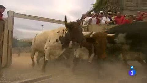 Ver vídeo  'Los mejores momentos del cuarto encierro de San Fermín 2012, de El Pilar'