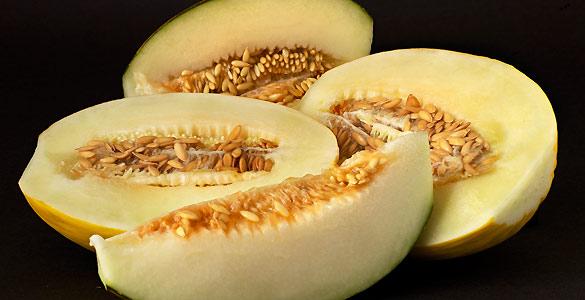 La secuenciación del genoma del melón permitirán avanzar en la mejora genética de la especie para producir variedades más resistentes