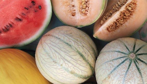 Melones y sandías, frutas de verano con pocas calorías