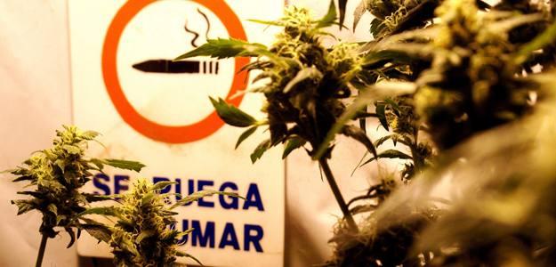 El presidente de Uruguay, José Mujica, presenta el proyecto de ley para legalizar la marihuana este miércoles.