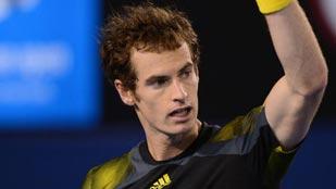 Murray supera a Federer y se cita con Djokovic en la final de Australia