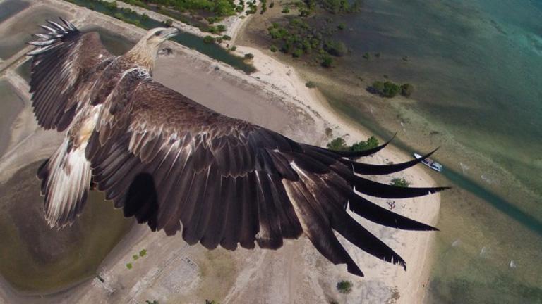 National Geographic premia fotografías tomadas con drones