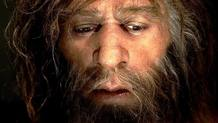 Un neandertal según los restos hallados en Croacia