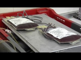 Ver v?deo  'Nueva vía para conseguir sangre artificial'