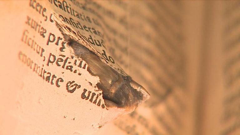 Una exposición recupera los objetos olvidados en libros de más de 4 siglos
