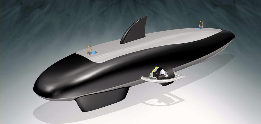 La orca submarina