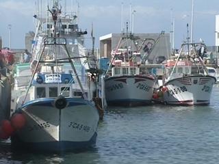 Ver vídeo  'El Parlamento Europeo vota en contra de la prórroga del acuerdo de pesca entre la UE y Marruecos'