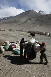 Pastores a los pies del Everest