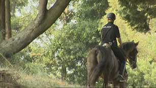 Ver vídeo  'La Policía Nacional vigilará a caballo los montes de Galicia'