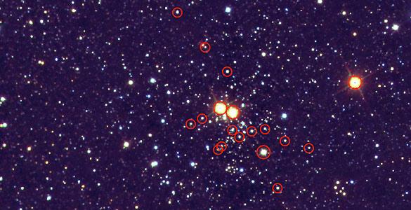 Imagen del cúmulo estelar masivo Masgomas-1 en la que los círculos rojos señalan las estrellas masivas clasificadas por los astrofísicos.