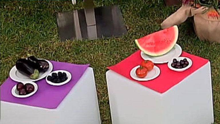 La Mañana de la 1 - Propuesta de menú para la dieta de los colores