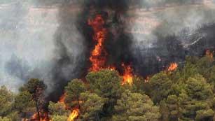 Ver vídeo  'La provincia de Valencia sufre un verdadero desastre ecológico'