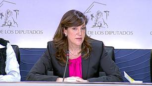 Ver vídeo  'El PSOE e IU presentarán enmienda a la totalid