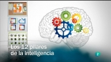Redes - Los 12 pilares de la inteligencia
