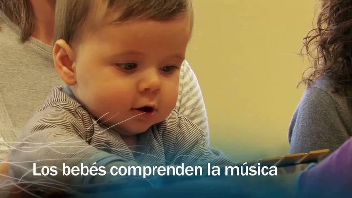 Redes - Los bebés comprenden la música - avance