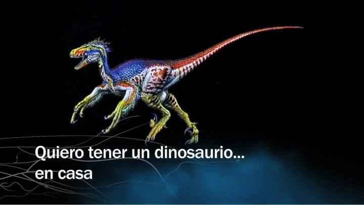 Redes - Quiero tener un dinosaurio... en casa - avance
