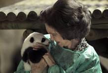 La Reina sostiene a uno de los pandas