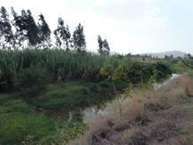 El río Genfel, en Wukro (Etiopía)