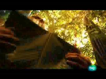 Ver vídeo  'Ruta Quetzal - La tierra entre dos mares'