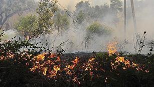 Ver vídeo  'Se elevan a cuatro las víctimas mortales en el incendio de Empordà que sigue activo'
