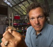 Barry Sinervo sostiene un ejemplar de lagartija del mezquite